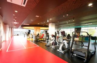 運動療法・トレーニング機器